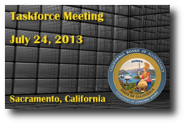 Taskforce Meeting - July 24, 2013